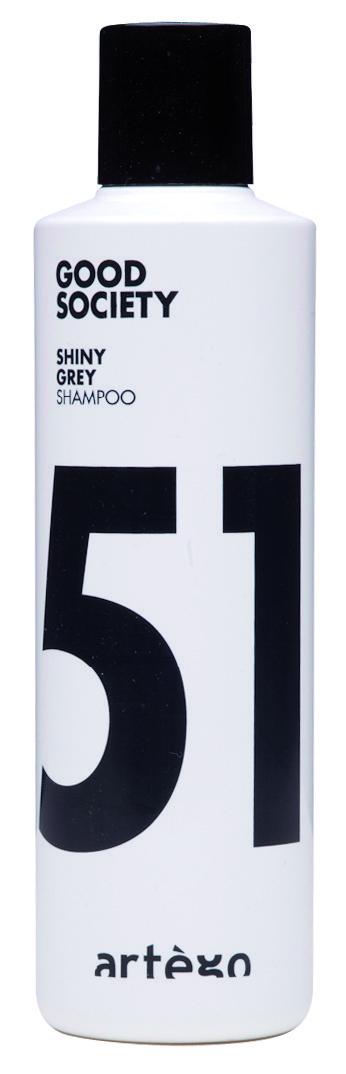 ARTÉGO šampon na odbarvené vlasy silver 51  250 ml
