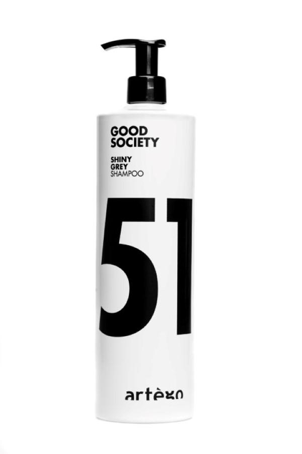 ARTÉGO šampon na odbarvené vlasy silver 51  1000 ml